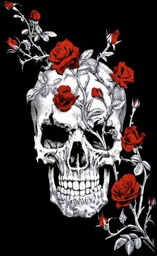 tee shirt long femme t te de mort skull roses rock a gogo. Black Bedroom Furniture Sets. Home Design Ideas