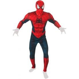 Déguisement SPIDER-MAN - Spidey Costume