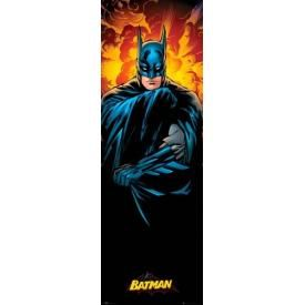 Door Poster BATMAN - Justice League