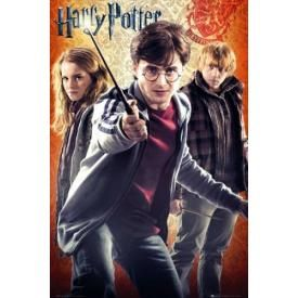 Poster HARRY POTTER - Trio