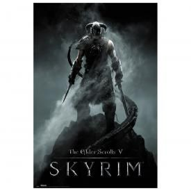 Poster THE ELDER SCROLLS - Skyrim Dragonborn