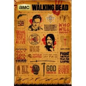Poster THE WALKING DEAD - Infography