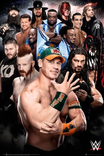 Image de Poster WWE - Superstars 2016