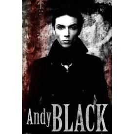 Poster ANDY BLACK - Portrait