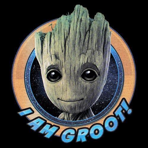 GARDIENS LA Rock T A Gogo Groot GALAXIE 2 Shirt VOL LES DE Homme Sqwv4Xwt 690f0dfc2cd