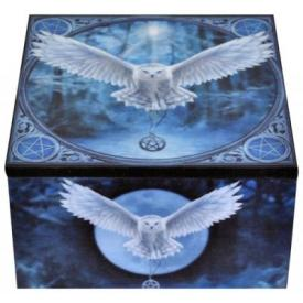 Boîte Miroir ANNE STOKES - Awaken Your Magic