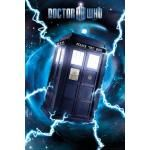 Poster DOCTOR WHO - Metallic Tardis