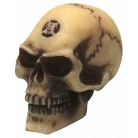Mini Crâne Alchemy DARK DECO - Worry Skull