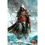 Poster ASSASSIN'S CREED - IV Shore