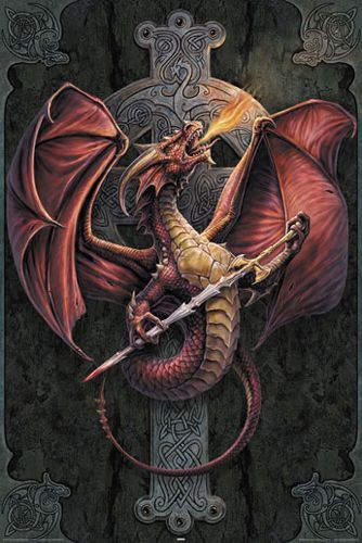 Image de Poster ANNE STOKES - Celtic Dragon